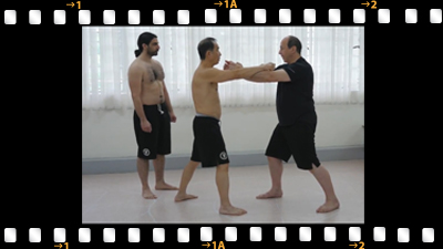 Chong (Form) Practice - Chow Gar Mantis Kung Fu Association